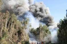 فلوریڈا میں آسمانی بجلی گرنے سے آگ لگ گئی،18ہزارایکٹر رقبہ جل کر راکھ