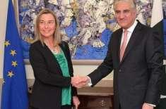 شاہ محمود قریشی سے یورپی یونین کے خارجہ تعلقات کی سربراہ کی ملاقات ..