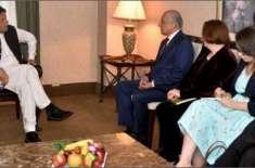 وزیراعظم عمران خان سے امریکی نمائندہ خصوصی زلمے خلیل زاد کی ملاقات