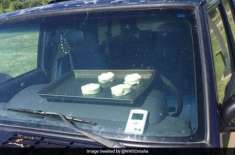 Biscuits Start Baking In Hot Car During Heat Wave