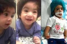 نشوا کے والد کا بیٹی کے انتقال کے بعد اہم بیان