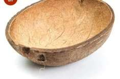 Amazon Is Selling Coconut Shells