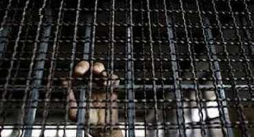 اسرائیلی فوجی عدالت نے فلسطینی قید کی انتظامی قید میں تیسری بار چھ ..