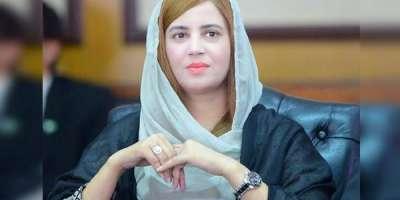 مریم نواز تقریر نہ کریں، اباجی کو کہیں کہ پہلی پرواز پکڑ کر پاکستان ..