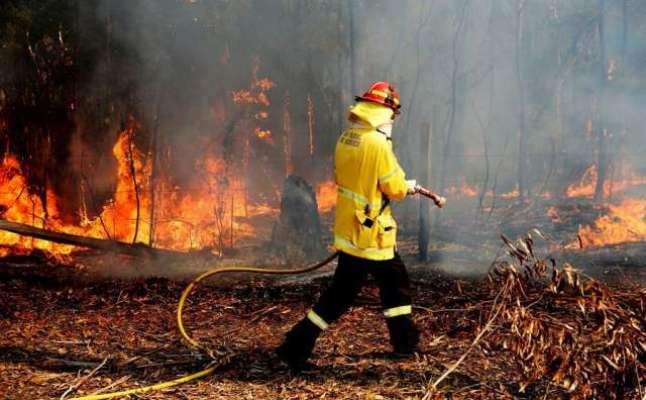 آسٹریلیا ،جنگلات میں آتشزدگی سے 2 افراد ہلاک