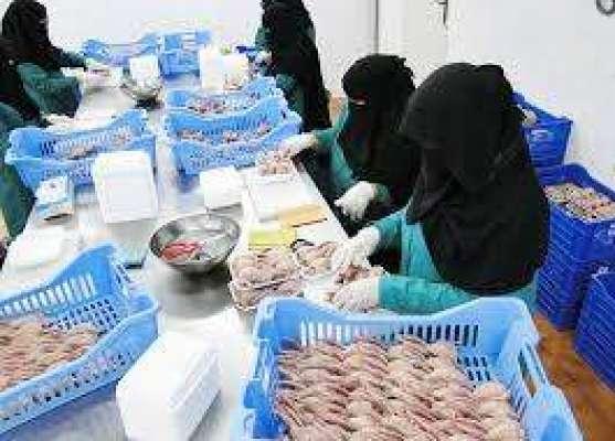 سعودی عرب کی سکول کینٹینز میں کھانے پینے کی اشیاء کے نرخ مقرر کر دیئے ..