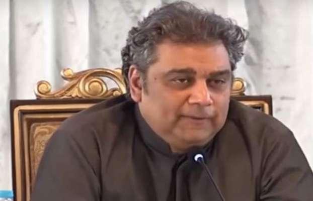 مولانا فضل الرحمن میرے نہیں خود اپنے سر پر سوار ہیں،علی زیدی