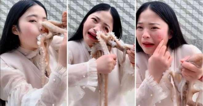 چینی خاتون کو زندہ آکٹوپس نگلنے کی کوشش مہنگی پڑ گئی