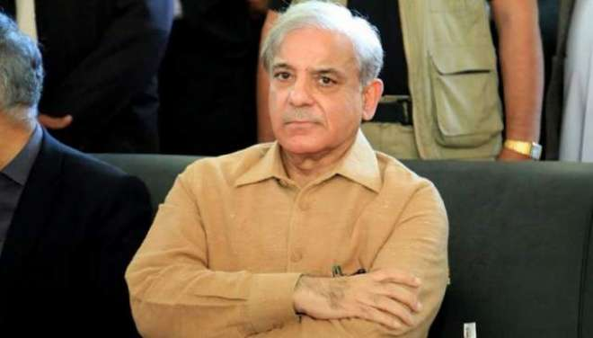 شہبازشریف کا پارٹی کی سینئر رکن نگہت میر کے انتقال پر اظہار تعزیت