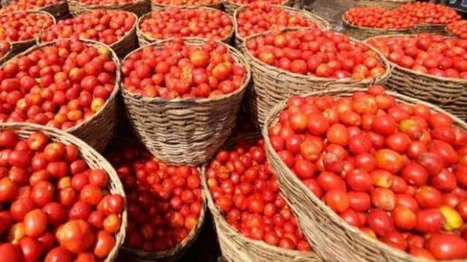 مہنگائی کی ستائی عوام کیلئے بالآخر خوشخبری، ٹماٹر کی قیمت میں ایک ہی ..