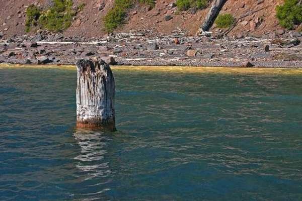 لکڑی کا یہ مشہور شہتیر 120 سالوں سے عمودی تیر  رہا ہے۔ کوئی اس کی وجہ نہیں ..