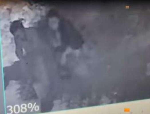 نمرتا کی اپنے دوست مہران ابڑو کے ساتھ ایک اور ویڈیو سامنے آ گئی
