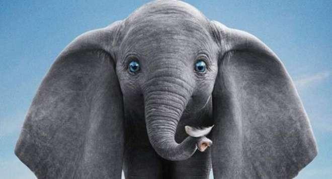ہالی ووڈ اینیمیٹڈ فلم''ڈمبو''کا نیا ٹریلر جاری کردیاگیا