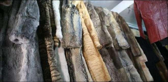 جانوروں کی کھال سے جیکٹس اور کوٹ بنانے پر ہزاروں ڈالر جرمانہ ہو گا