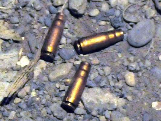 بھتیجے نے جائیداد کے تنازعہ پر چچا پر فائرنگ کر دی ،دو دکاندار جاں بحق ..