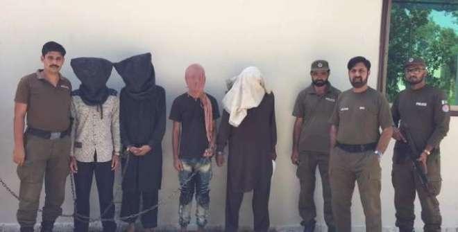 سیالکوٹ پولیس کی سماج دشمن عناصر کے خلاف کاروائیاں جاری