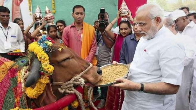 گائے بھارت کی ثقافت کا اہم حصہ ہے،وزیراعظم نریندرامودی