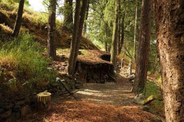 حقیقی زندگی کا ہوبٹ پچھلی دو دہائیوں سے پہاڑی کے دامن میں تنہا زندگی ..