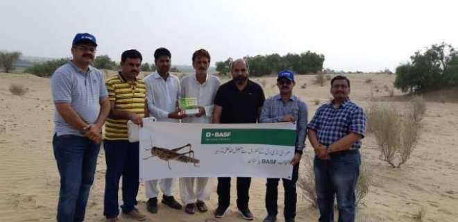 سندھ اور پنجاب میں صحرائی ٹڈی د َل سے بچاؤکیلئے بی اے ایس ایف (BASF) پاکستان ..