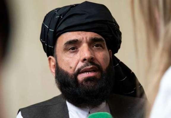 پاکستان کا آپ پر کتنا اثر و رسوخ ہے؟ طالبان کے ترجمان نے انٹرویو کے ..