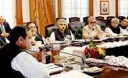 پنجاب کابینہ کے اجلاس میں آٹے کی نئی قیمت کی منظوری دےدی