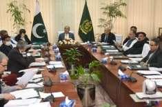 کورونا وائرس:اقتصادی رابطہ کمیٹی نے 100 ارب روپے کے ہنگامی فنڈ کی منظوری ..