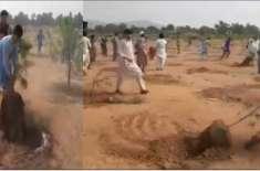 باڑہ میں پودے اکھاڑنے کا واقعہ زمین تنازعہ وغلط فہمی کی وجہ قرار