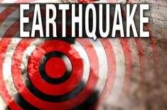 انڈونیشیا کے صوبہ مشرقی جاوا میں زلزلہ، سونامی وارننگ جاری نہیں ہوئی