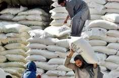 پنجاب حکومت کی ناقص گندم کوٹہ پالیسیوں سے آٹے کا بحران پیدا ہوا ہے، ..