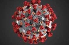 متحدہ عرب امارات میں کرونا وائرس کے دو اور مریض سامنے آ گئے