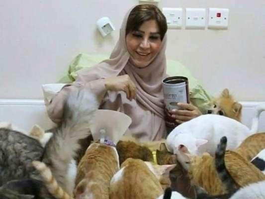 خاتون نے اپنی زندگی بلیوں کے لیے وقف کر دی،گھر میں500بلیاں اکٹھی کر لیں