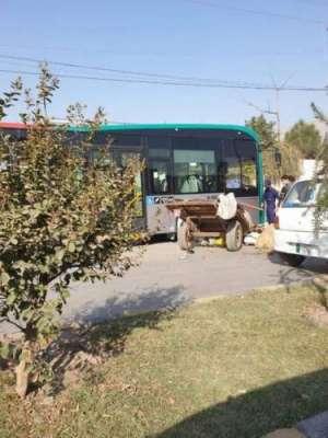 پشاور میں بی آر ٹی بس گدھا گاڑی سے ٹکرا گئی