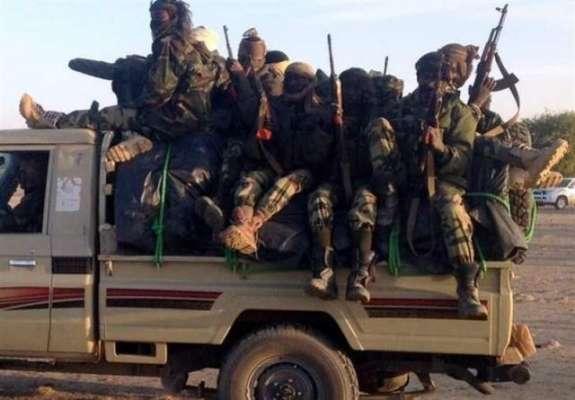 کیمرون، فوجیوں نے ملک کے جنوب مغرب کے علاقوں میں آپریشن کے دوران11 ..
