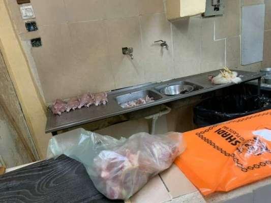 جدہ میں شہریوں کو مردہ مرغیاں کھلائے جانے کا انکشاف