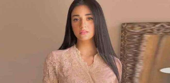 مختصرکپڑے نہیں پہن سکتی اس لئے فلم میں کام نہیں کرتی، سارہ خان