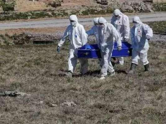 کورونا سے مزید 43 افراد چل بسے ،3119 نئے کیسز رپورٹ ہوئے