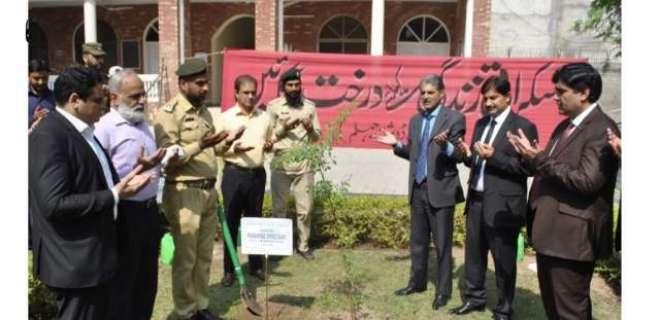 ڈسٹرکٹ اینڈ سیشن جج جہلم نے سیشن کورٹ میں پودا لگا کر شجرکاری مہم کا ..
