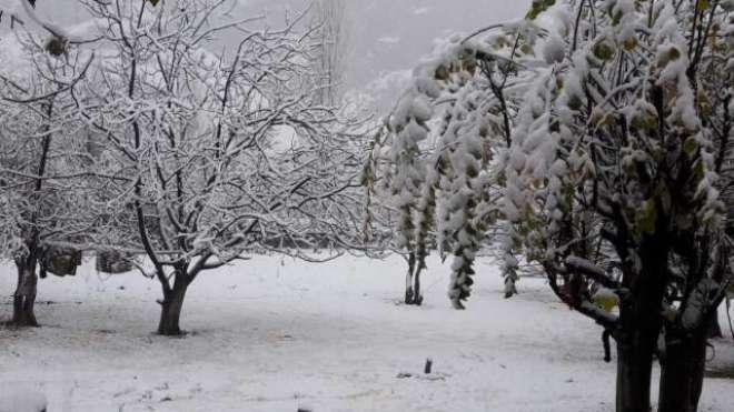 لوئر اور اپر چترال کے پہاڑوں پر موسم سرما کی پہلی برفباری ، سردی کی ..