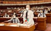 شہباز شریف نے وفاقی بجٹ کو الفاظ کا گورکھ دھندا قرار دے دیا