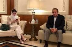 حکومت کسی بھی صورت نواز شریف کو پاکستان واپس نہیں لا سکتی