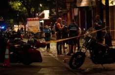 امریکا میں دوحملہ آوروں کی فائرنگ سے 14 افراد زخمی