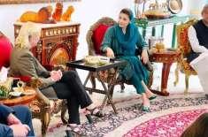 امریکی سفیر کی علیحدہ ملاقاتوں سے مسلم لیگ ن میں تقسیم کی قیاس آرائیاں