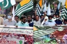 کشمیر بنے گا پاکستان، کشمیر کا استحصال نامنظور