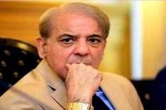 آزاد کشمیر الیکشن میں شکست پر شہباز شریف نے ڈانٹ پلا دی