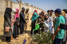 روہڑی میں بیگم نصرت بھٹو وومین ہونیورسٹی کی طالبات کے درمیان پودے لگانے ..