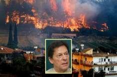 وزیراعظم کا جنگل میں لگی آگ سے نقصان پر ترک حکومت کے ساتھ ہمدردی کا ..