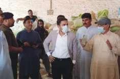 اوکاڑہ کے ڈپٹی کمشنر کیپٹن (ر) محمد علی اعجاز کی  ہدائیت پہ محکمہ زراعت ..