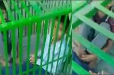 50 روپے کی مبینہ چوری پر مرغی فروش نے دو بچوں کو پنجرے میں بند کر دیا