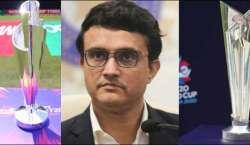 بھارتی کرکٹ بورڈ کا ٹی ٹونٹی ورلڈ کپ اماراتی میدانوں میں کرانے پر غور