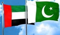 پاکستان یو اے ای کیساتھ ٹی ٹونٹی ورلڈکپ کی میزبانی کا خواہشمند